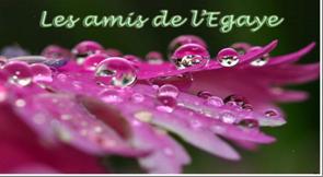 Blog de L'EGAYE Logo